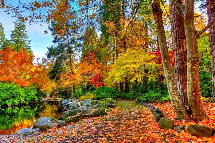 Tranh 3D phong cảnh thiên nhiên núi rừng